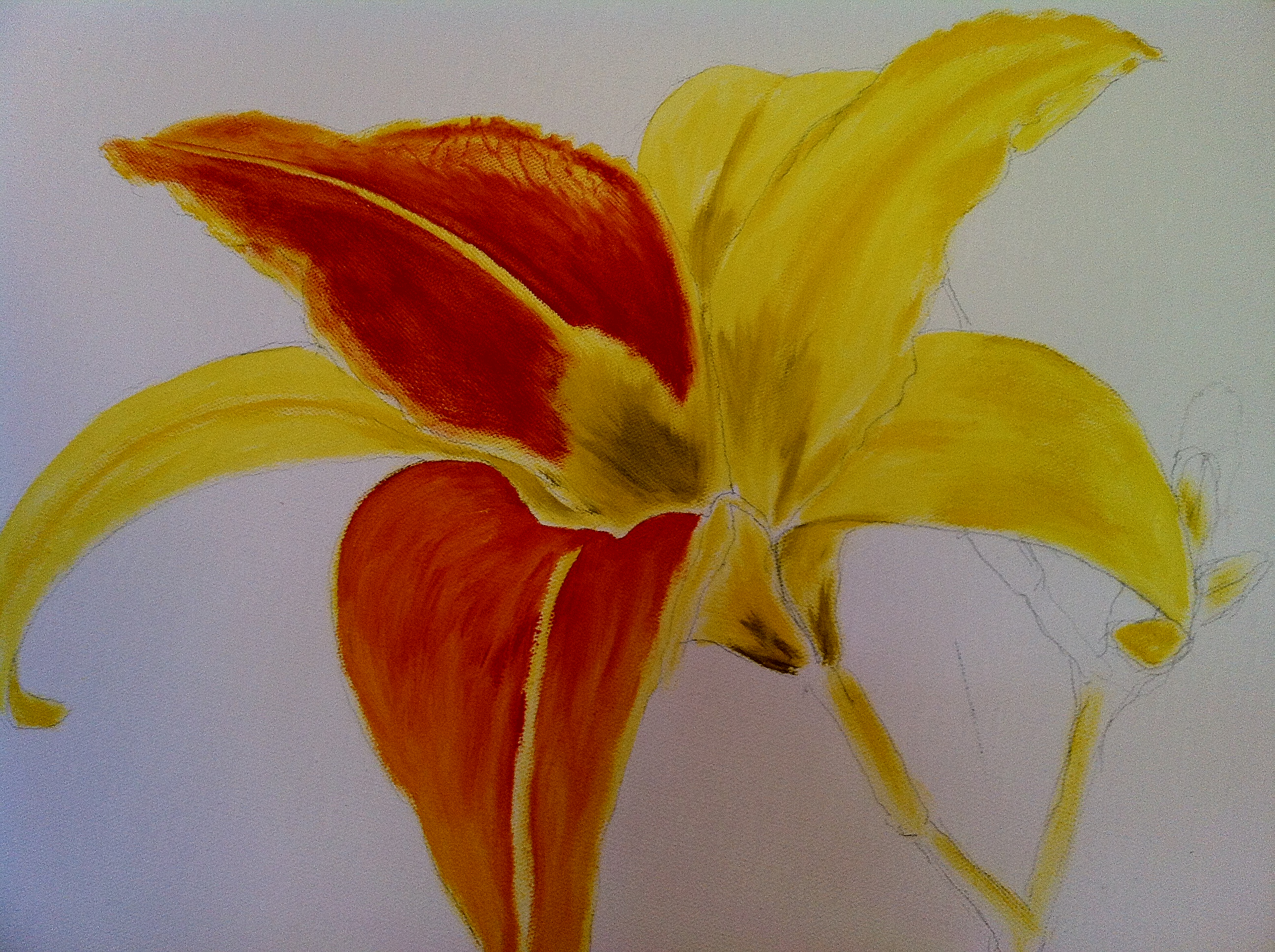 Oil Painting Lessons… Or A Tiger Lily In My Tank | A Blanc Canvas